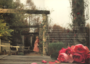 pinkhouse-rose