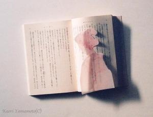 FUJISAWA4のコピー